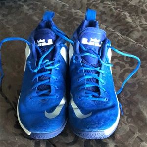 Mens Lebrons Zoom Witness Basketball Shoes